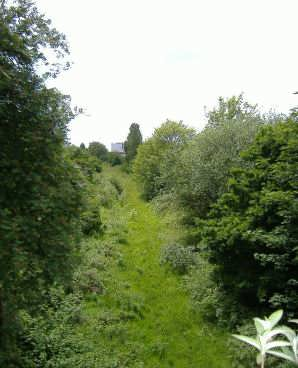 Looking South from Blackhorse Lane bridge